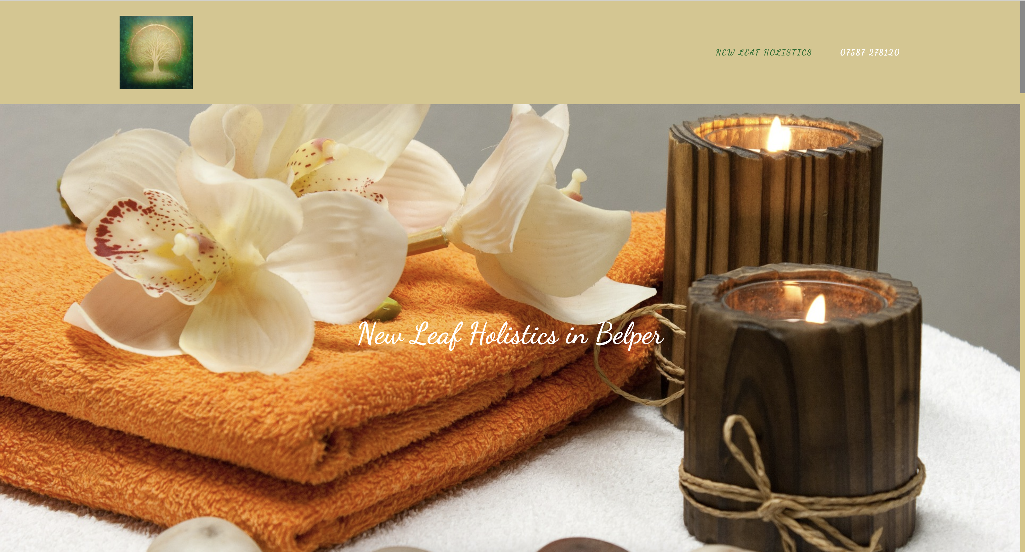 New Leaf Holistics Website Homepage